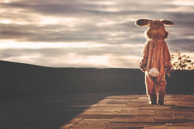 écrire beaucoup : homme déguisé en lapin